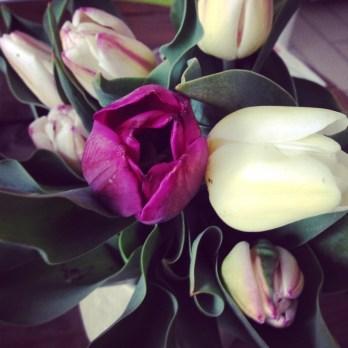Samedi 29 mars : tulipes contre le cancer