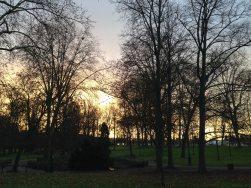 Mercredi 14 janvier 2015 : couleurs du matin