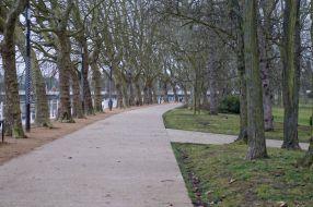 Vendredi 27 février : le long de l'Allier à Vichy (photo prise le mercredi en fait)
