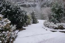 Lundi 18 janvier 2016 : Clermont sous la neige