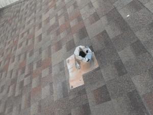Roof Repair Dallas, Texas