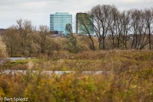 Nederland, The Netherlands, 20-11-2016 Het uiterwaardengebied Meinerswijk Stadsblokken waarover op 30 november een referendum in de stad wordt gehouden. Huidige eigenaar van het gebied is het vastgoedbedrijf KondorWessels dat voorstander is van beperkte woningbouw in het gebied. De meerderheid in de gemeenteraad is het daarmee eens. Het burgerinititatief Kloppend Stadshart vreest aantasting van natuur en landschap en heeft het referendum aangevraagd. Foto: Bert Spiertz