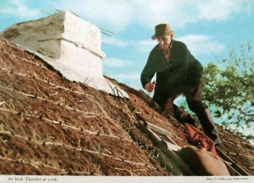 alte Postkarte: Dachdecker deckt Haus mit Ried.