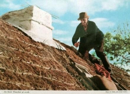 Dachdecker deckt Haus mit Ried.