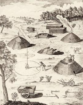 Schema: Herstellung von Holzkohle