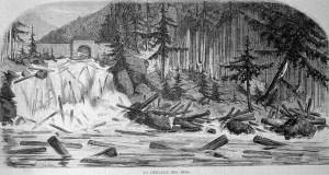 alter Stich: gefällte Holzstämme schwimmen im Wasser