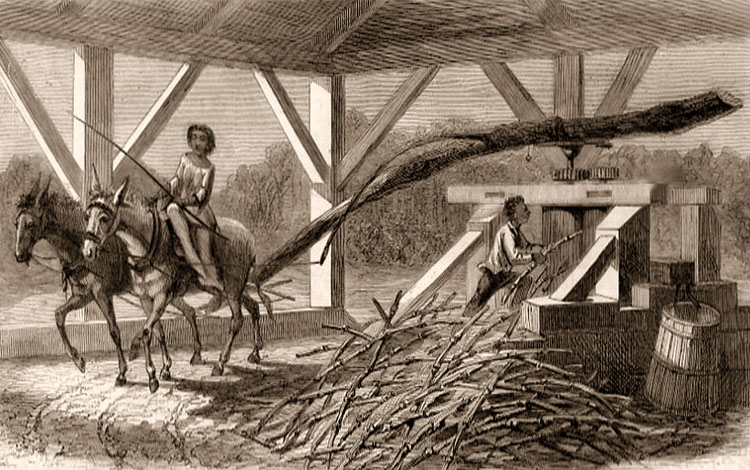 Arbeit in der Zuckerrohrmühle