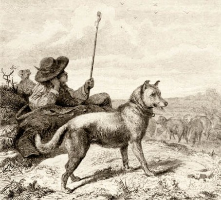 sw-Zeichnung: Schäfer bei einem Päuschen mit Hirtenstab und Hütehund