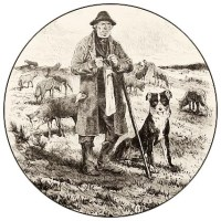 Schäfer mit Herde und Hütehund