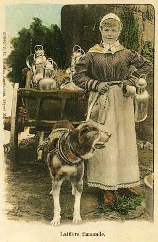 Milchfrau, Milchmagd, Milchhändlerin, Hundekarren