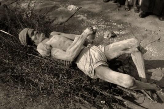 sw Foto: Mann liegt rücklings auf Dornengestrüpp