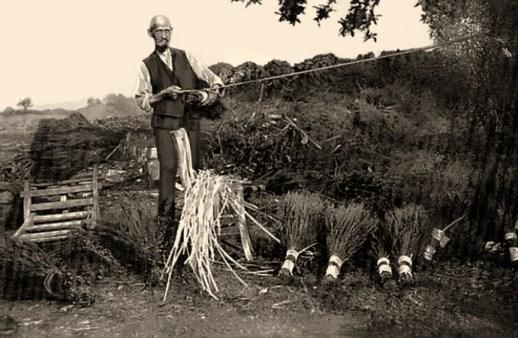 sw Foto: Fritz Kempens bei der Arbeit in der Heide