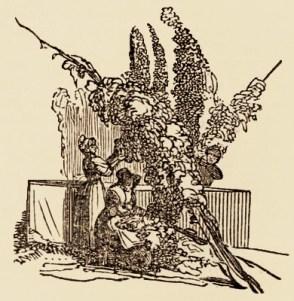 Holzstich: zwei Frauen und ein Mann ernten Hopfenranken - England, 1856