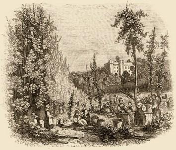 Kupferstich: Frauen und Männer im Hopfengarten beim Ernten der Ranken - England, 1840