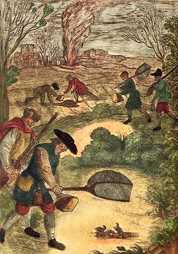 kolorierte Federzeichnung: viele Männer keschern Vögel am Boden - 1622