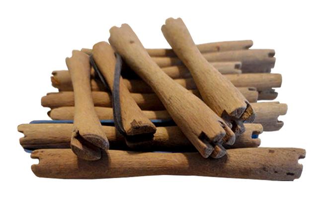 Foto: mehrere Holzwickler an den Enden eingekerbte Holzwickler in verschiedenen Größen