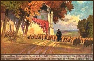 Künstlerkarte: Hirte mit Schafen unterwegs im Herbst - 1910