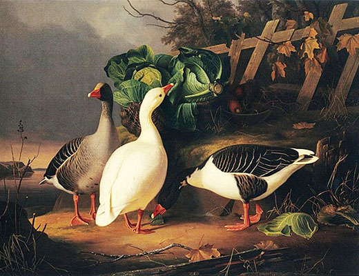 Gemälde: Gänse naschen Kohl im Morgennebel - 1854