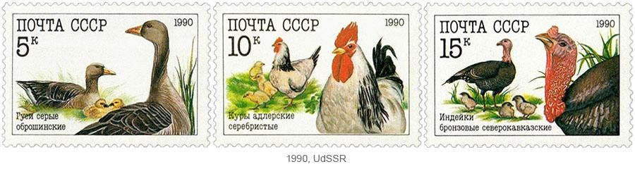 Briefmarkensatz: Nutzgeflügel (Gänse, Hühner, Puten) - 1990, UdSSR