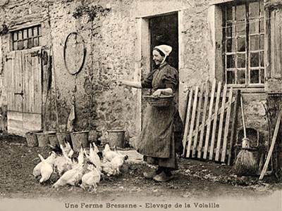 sw Fotopostkarte: Bäuerin beim Hühnerfüttern ~1900, Frankreich
