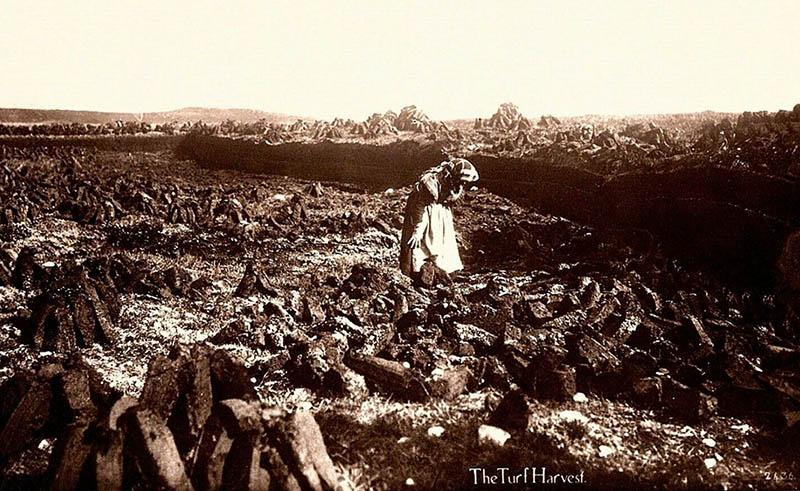ales Foto: Frau steht in einem Torfstich