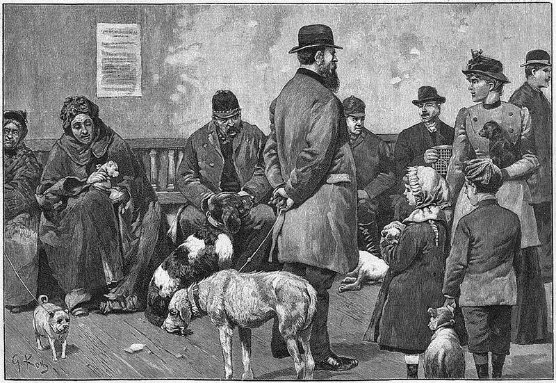 sw-Bild: Wartende mit ihren kranken Tieren