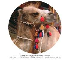 Farbfoto: mit Quasten geschmückte Kamele - 2002, USA