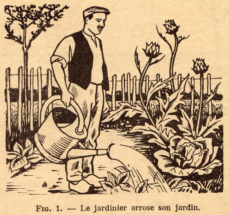 Illustration: Mann gießt die Pflanzen im Garten