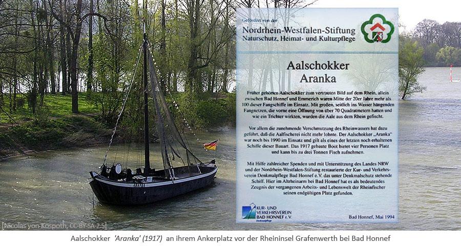 Farbfoto: Aalschokker 'Aranka' (1917) vor der Rheininsel Grafenwerth bei Bad Honnef