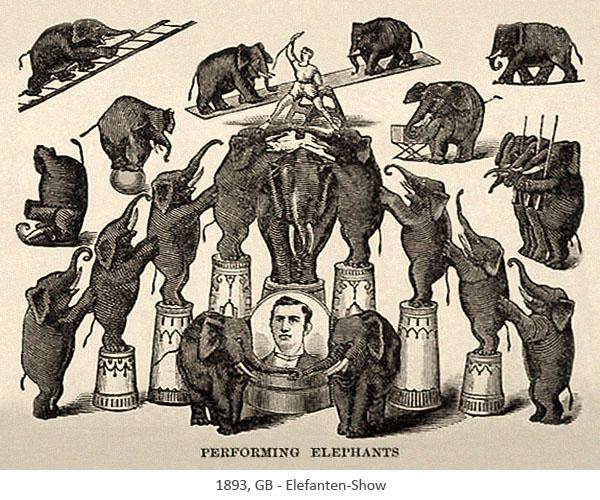 Zeichnung: Elefanten-Show - 1893, GB