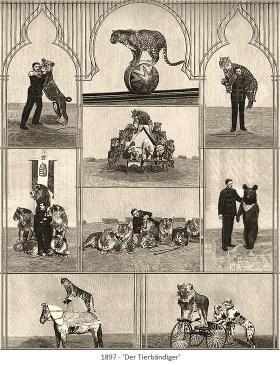 Kupferstich: 9 Szenen mit verschiedenen Rautieren - 1897