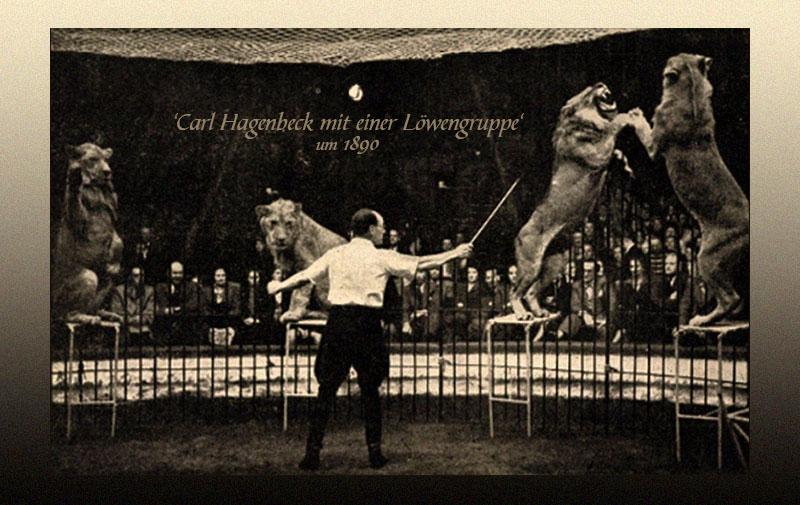 sw Postkarte: Dompteur Carl Hagenbeck mit Löwen im Zirkus ~1890