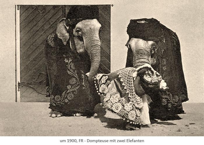 sw Postkarte: 2 Elefanten tragen waagerecht liegende Dompteuse mit ihren Rüsseln ~1900, FR