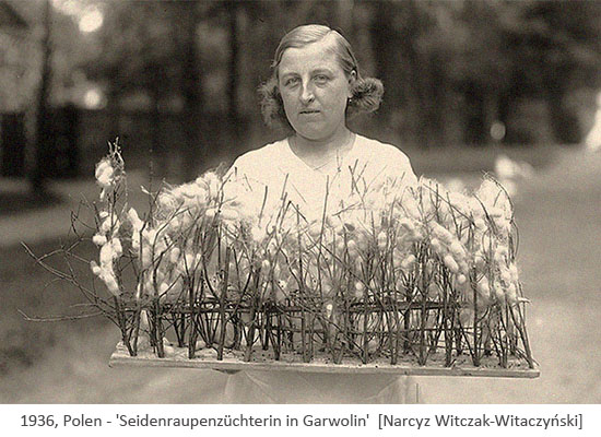 sw Foto: Seidenraupenzüchterin trägt Kokongestell - 1936, PL