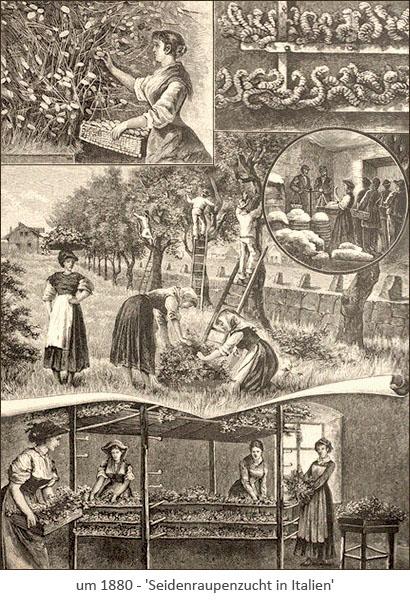 Kupferstich: Seidenzüchter in Italien ~1880