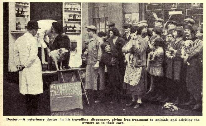 altes sw-Foto: Menschen mit kranken Tieren stehen an