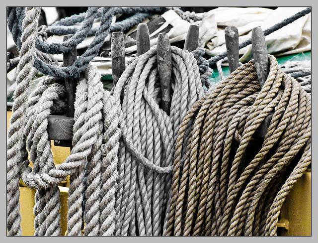 Foto: verschiedene Seile an Haken