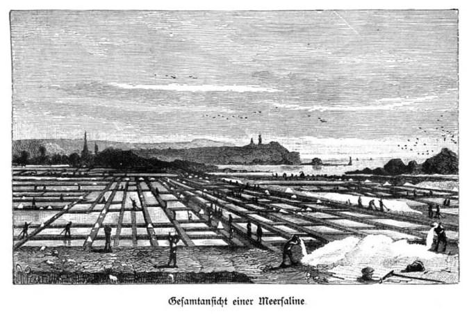 sw-Zeichnung: Salzfelder beim Meer