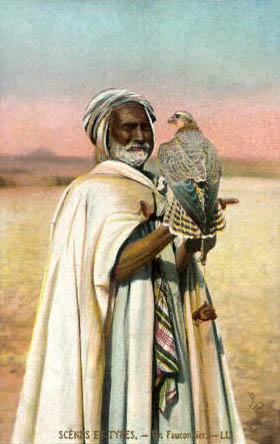 kolorierte PK: alter Falkner mit Falke auf dem Arm