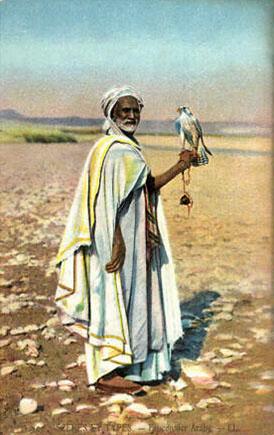 kolorierte Karte: arabischer, alter Mann mit Falke