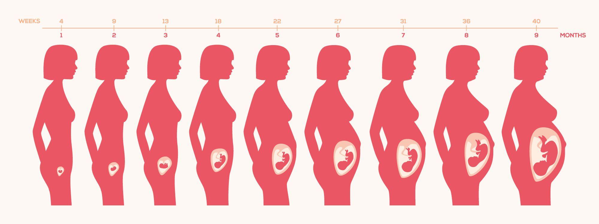 Sintomas de embarazo con 1 semana