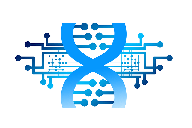 Nuevo mecanismo de reparación de roturas del ADN