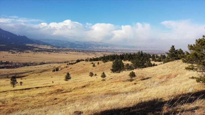 suelo biodiversidad estudio