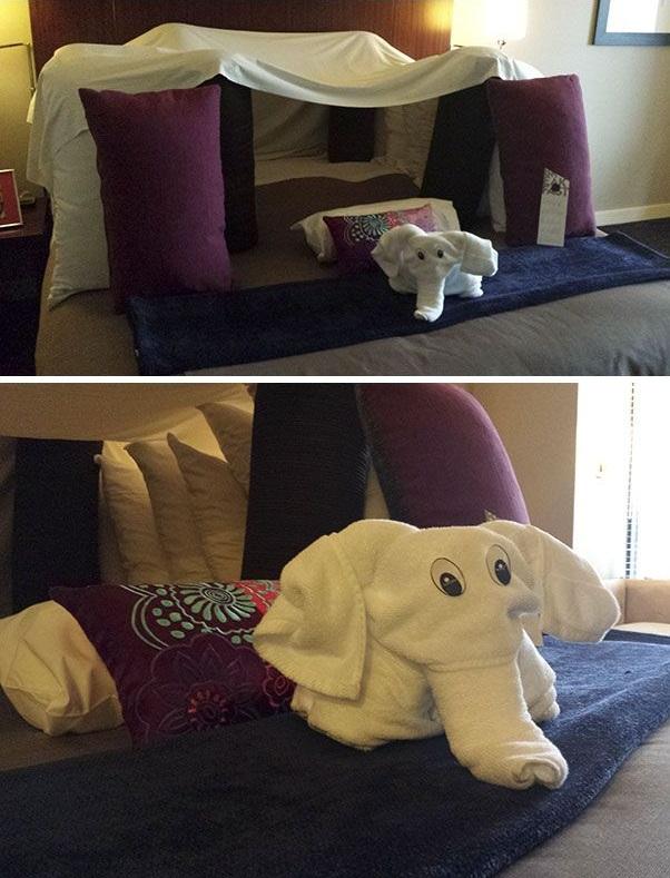 طلبات الفنادق