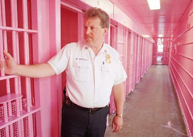 اللون الزهري للسجون