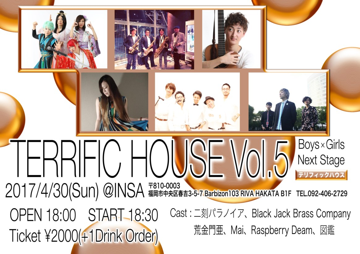 TERRIFIC HOUSEVol5