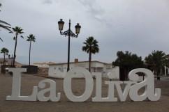 La Oliva_06102020 (20)