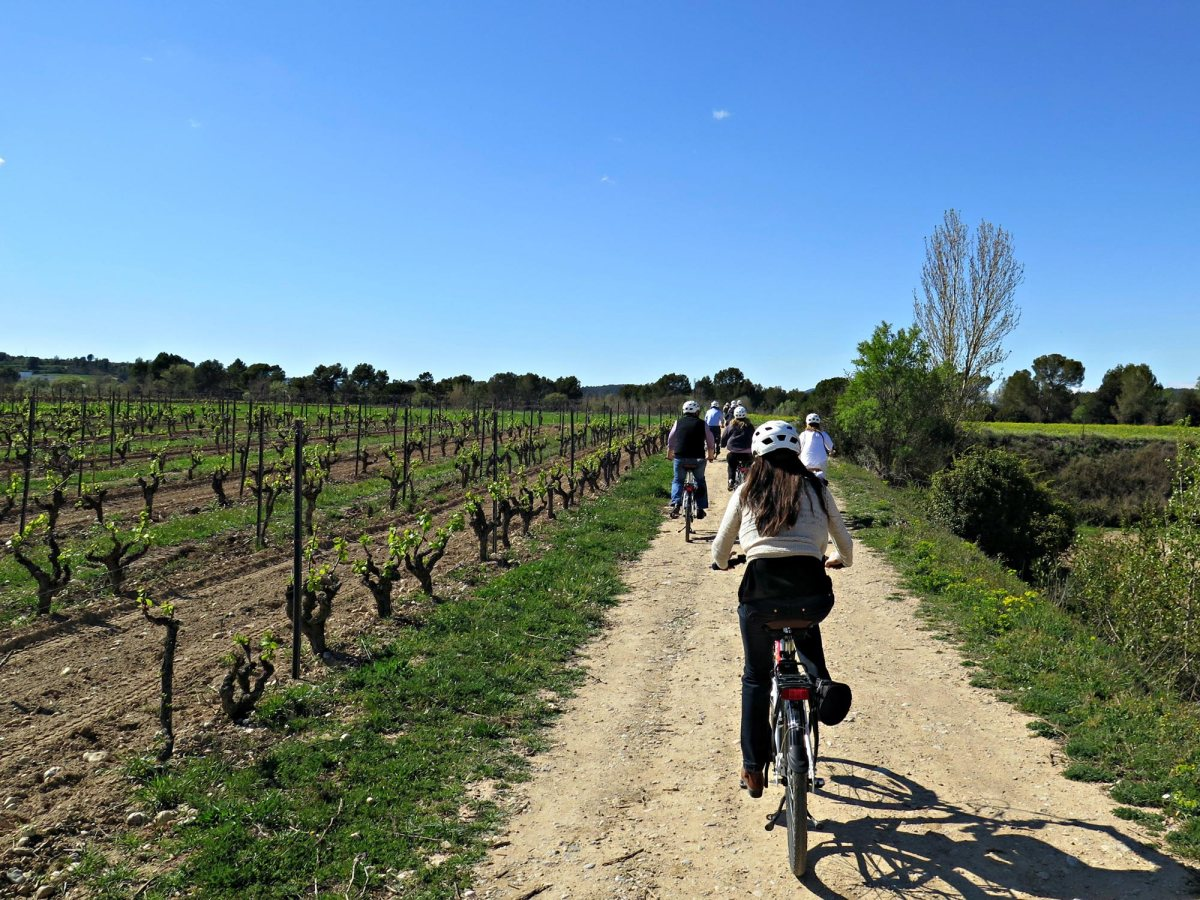 penedès by bicycle