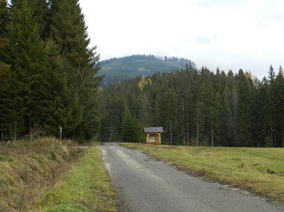 Widoki z trasy