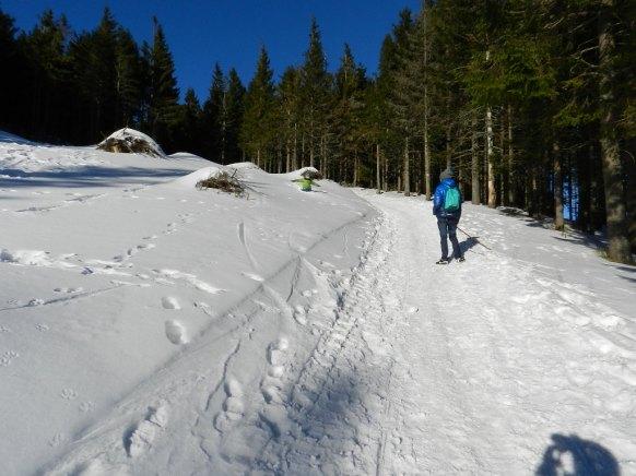 sposób na odporność spacery